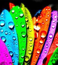 Психология и цвет
